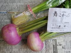 京野菜.JPG